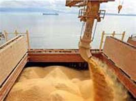 Soja: exportação de MT em setembro cai 5% em relação em relação a 2010
