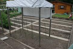 basel garden 017