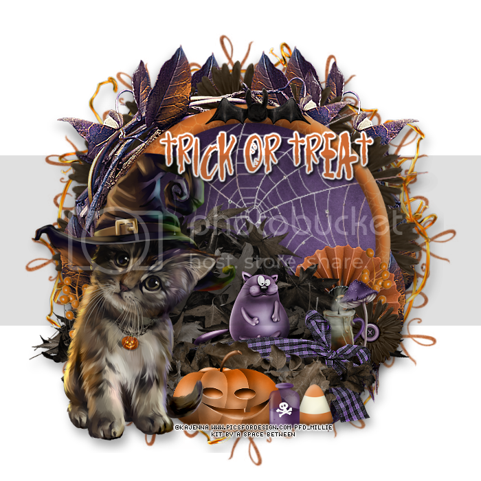 photo 281mpm15trickOrTreat.png