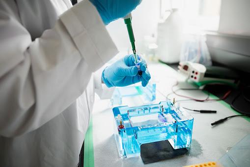 Negativa a prueba de ADN será considerada como aceptación de paternidad. (Getty)