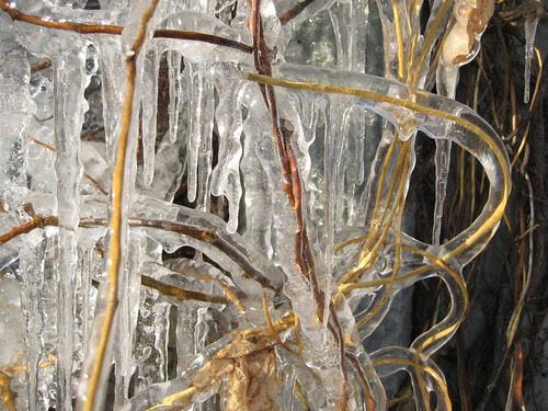 ice thing
