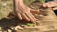 Diseño y permacultura