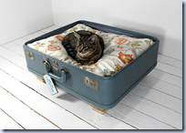 Vintage Houses for Cats