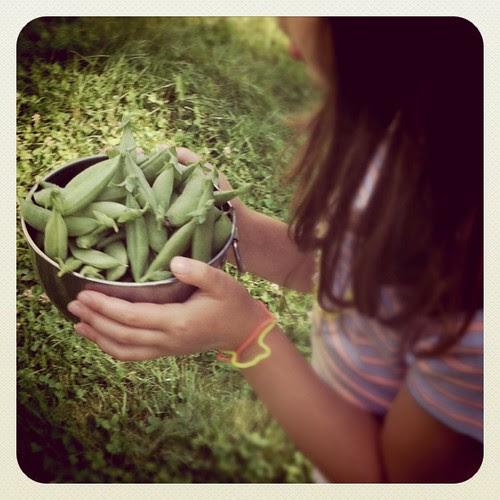 Breakfast peas