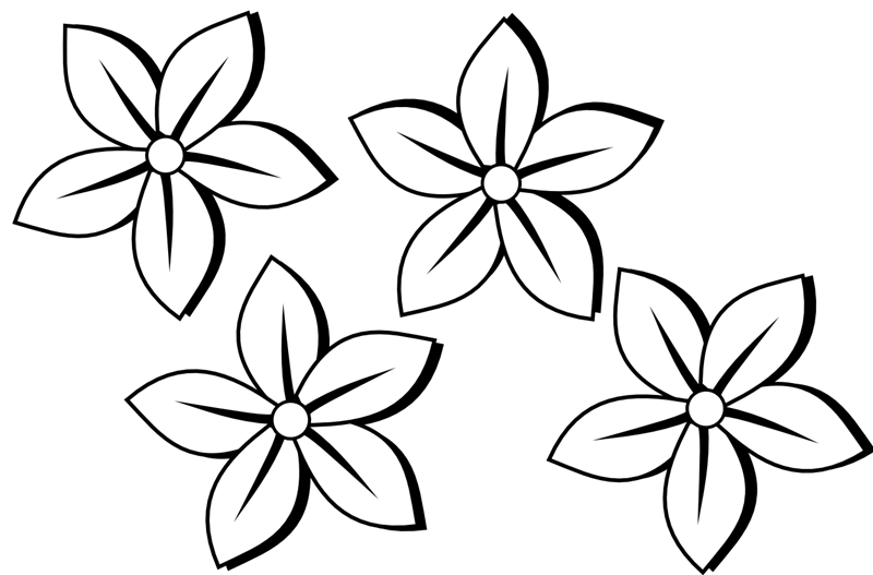 Free Black And White Flower Border Download Free Clip Art Free