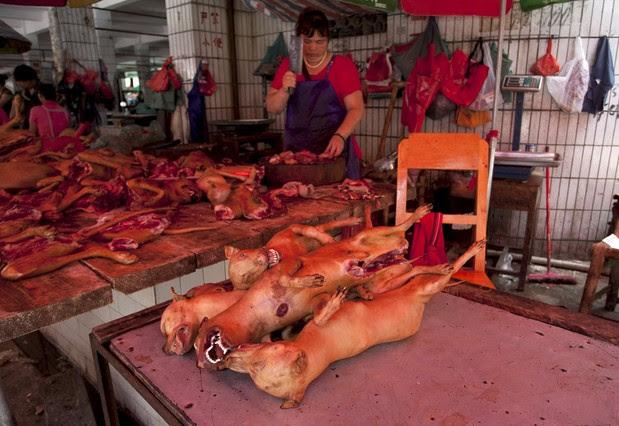 festival-carne-perro-yulin