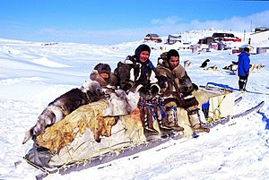 Traditional qamutik (sled), Cape Dorset