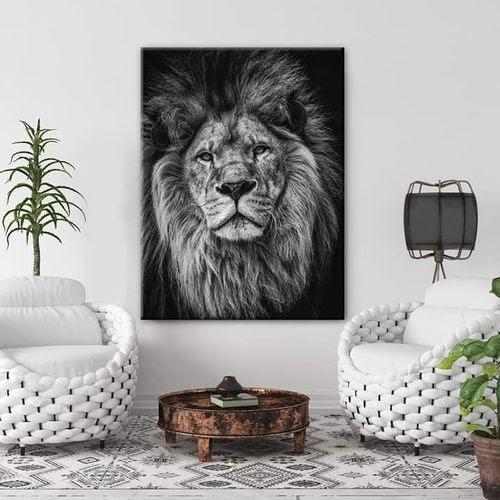 Jidar lion noir et blanc classique