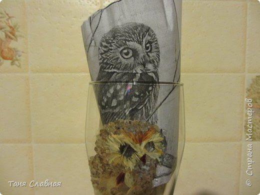 Птицы из засушенных лепестков цветов. Аппликация на стене