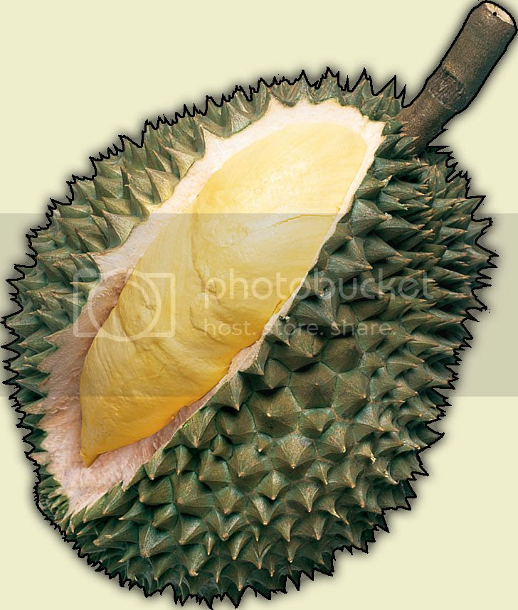 The Infamous Durian