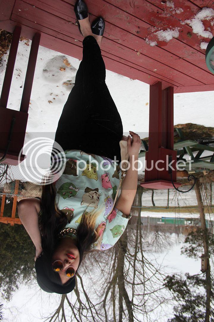 plus size fashion canada toronto cat sunglasses velvet harem pants flats plus size canadian fashion blogger