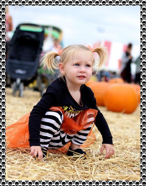 Pumpkin Patch October 2012 131