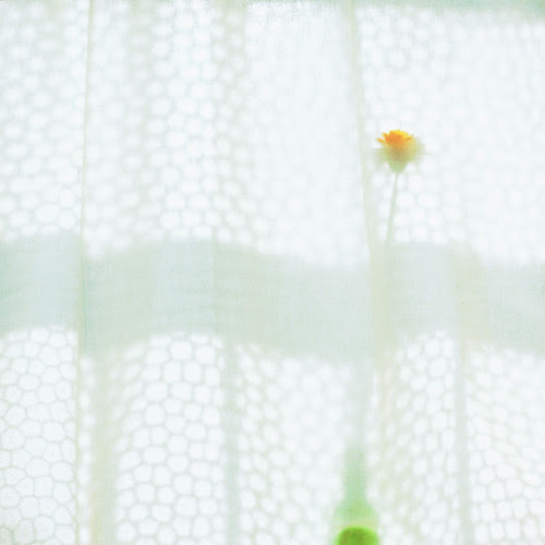 curtain por toshi*