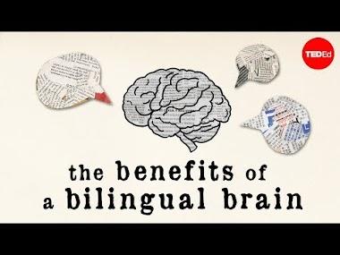 Los beneficios del cerebro bilingüe