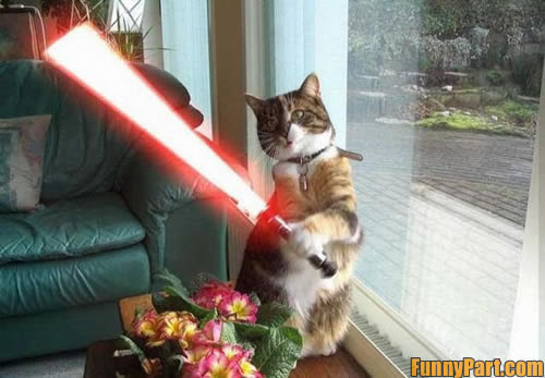 Lego Star Wars Clip Art. star wars funny cats