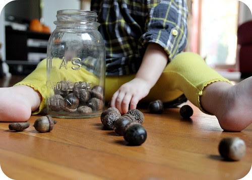 Eva and acorns
