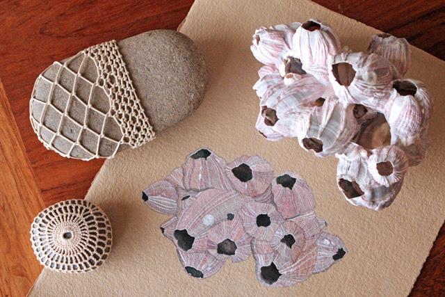 Watercolor barnacles