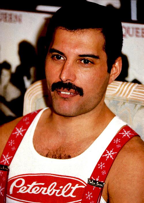 http://images6.fanpop.com/image/photos/32300000/Freddie-freddie-mercury-32395672-500-705.jpg