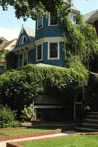 A house in South Midwood