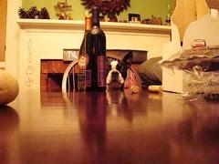 Chet Wine