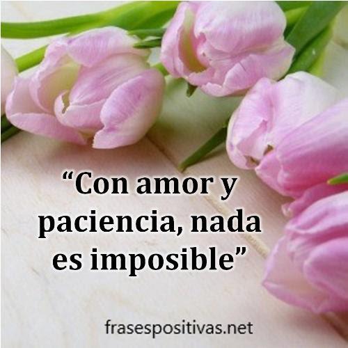 50 Las Mejores Frases De Amor Imposible Para Dedicar Imagenes
