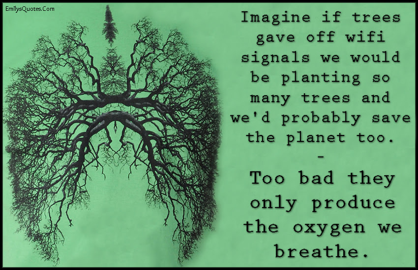 Imagine If Trees Gave Off Wifi Signals We Would Be Planting So Many