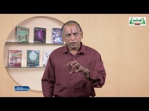12th Science and Indian Culture தடையும் விடையும் Kalvi TV
