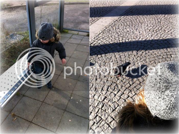 Bushaltestelle und Tauben