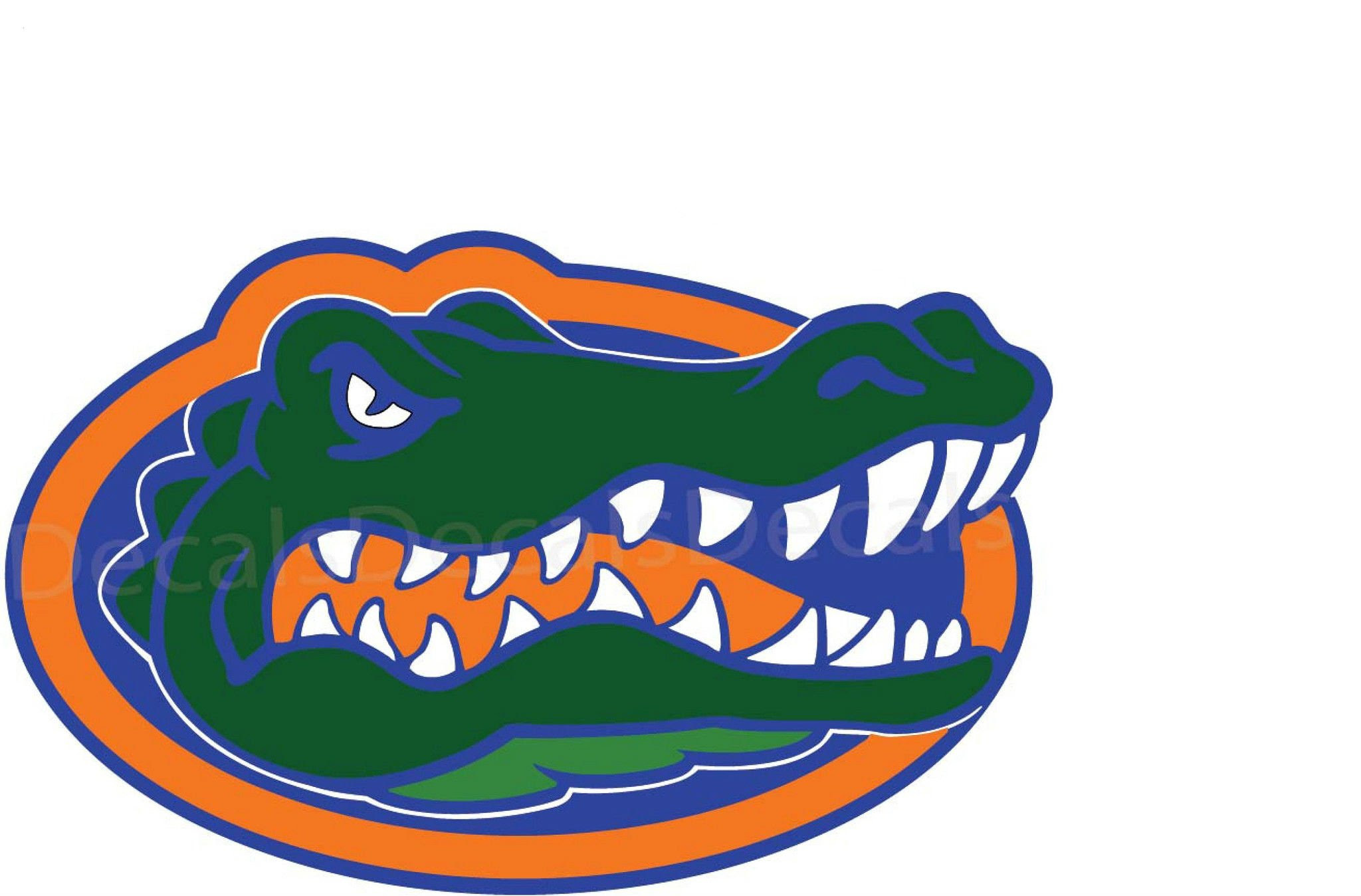 Florida Gators Wallpaper HD | PixelsTalk.Net