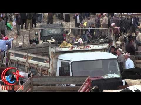 Bozkır Değirmen Çayırında Arefe Günü Kurbanlık Telaşesi