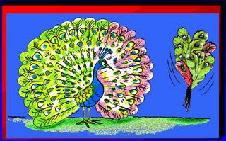 Peacock & feather duster