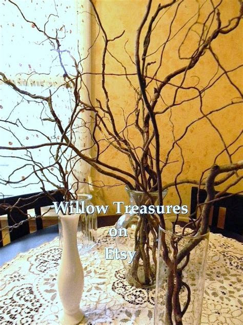 Curly Willow Branches (10) Dried Wedding Wishing Tree