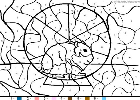 animalcolorbynumber color  number hamster coloring pages