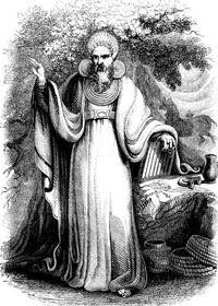 Sacerdote druido