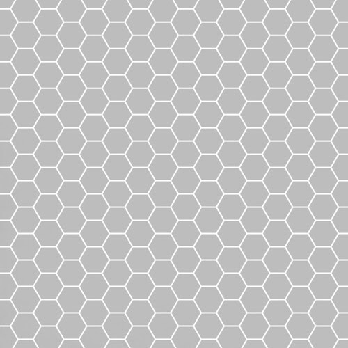 20-cool_grey_light_NEUTRAL_medium_hexagon_solid_12_and_a_half_inch_SQ_350dpi_melstampz