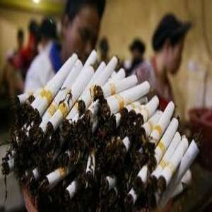 Produksi Rokok 2020 Ditargetkan 524 Miliar Batang, Bakal Naik 48%