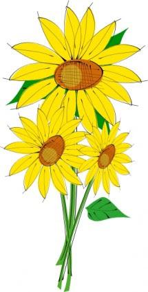 Bunga Matahari Vector Clipart Best