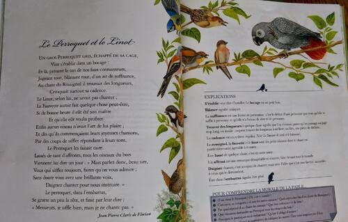 Fable: Le Perroquet et le Linot