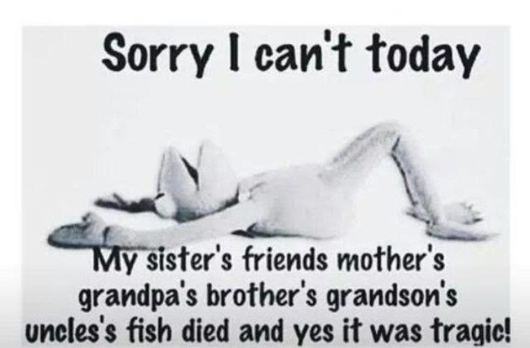 Sorry I Cant Today Funny Pictures Quotes Memes Funny Images