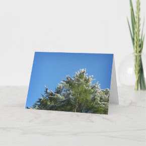 Snow-tipped Pine Tree on Blue Sky Greeting Card