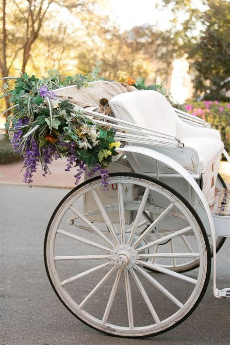 17 Best ideas about Wedding Carriage on Pinterest   Horse