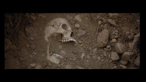 01 Skull