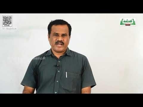 11th Chemistry இயற் மற்றும் வேதிச்சமநிலை பாடம் 8 பகுதி 2 Kalvi TV