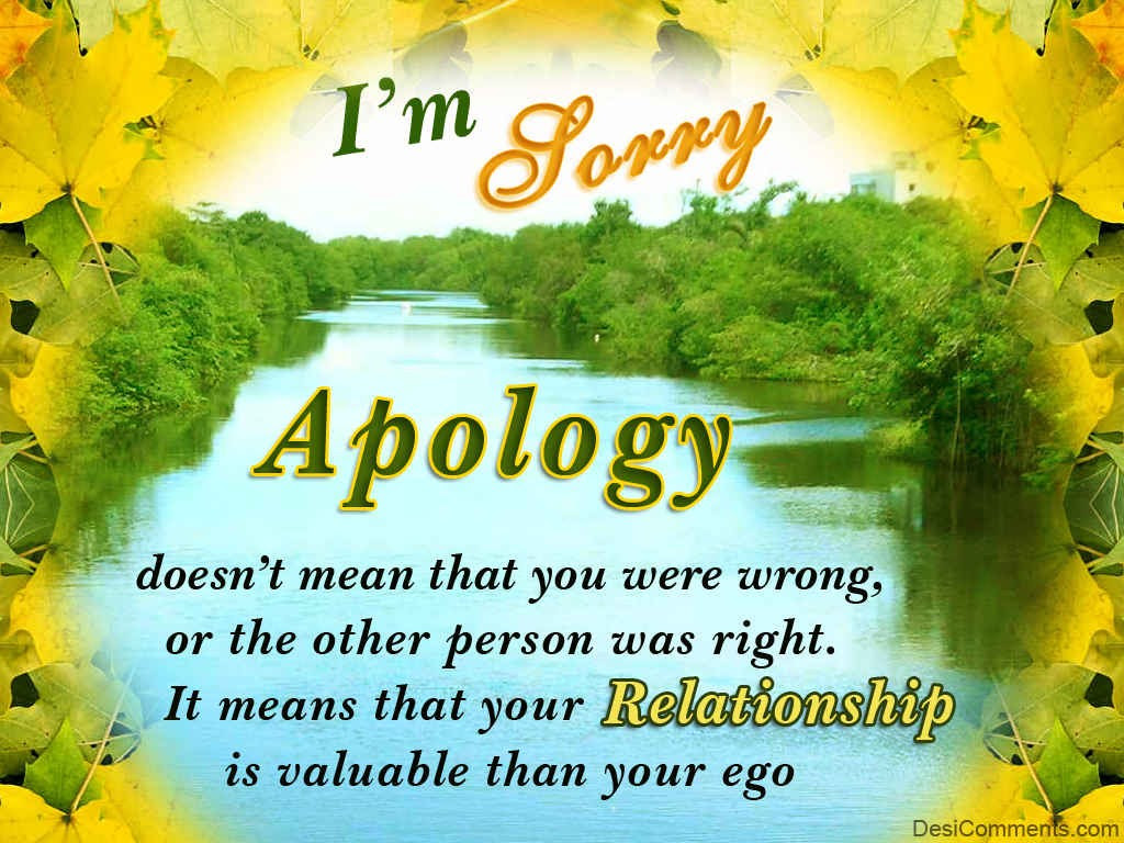 I Am Sorry I Never Meant To Hurt You Quotes More Information