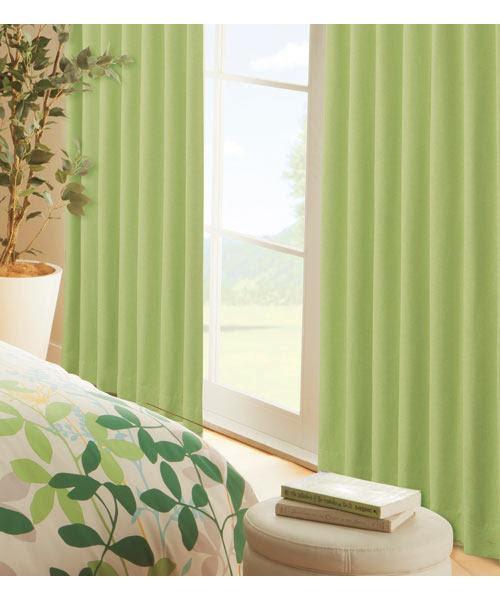 寄せ植えを緑一色でしたらナチュラル可愛いインテリアになっ ...
