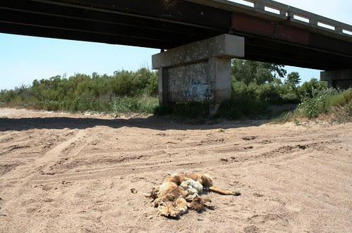 Fwd: Arkansas river drought 2012