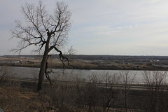 Indian Mound Park