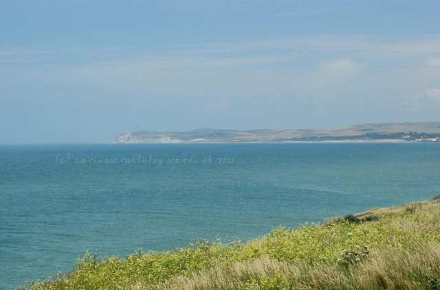 Cap Gris Nez looking towards Cap Blanc Nez