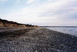 Shore of Bristol Bay near Naknek.