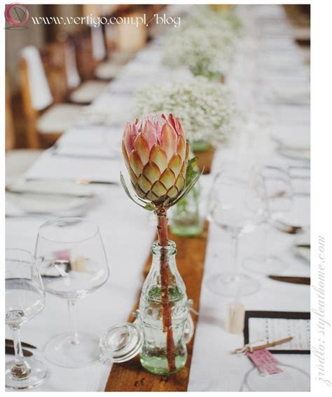 Protea ? exotic and spectacular flower for decoration and